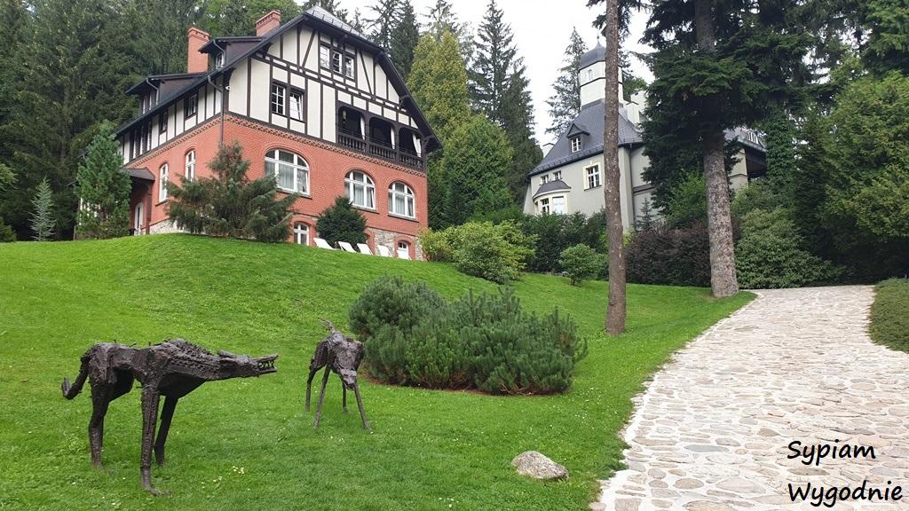 Villa Pepita Międzygórze - otoczenie