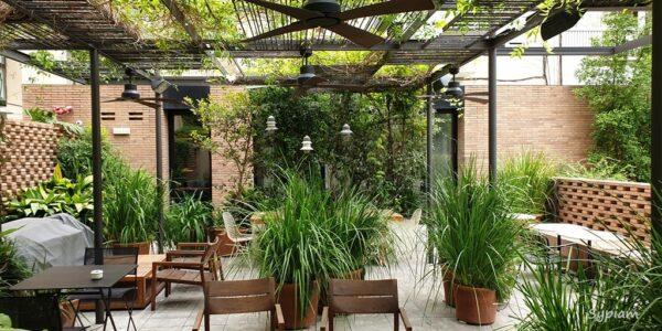 Alexandra Barcelona Hotel, Curio Collection by Hilton - ogród